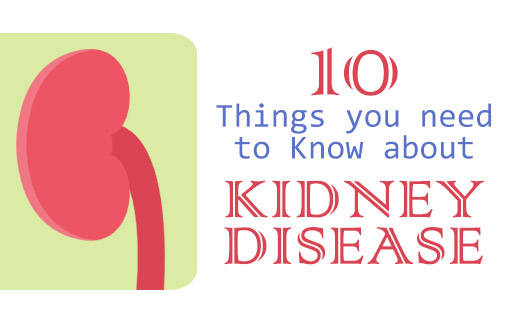 10 things you should know about kidney disease