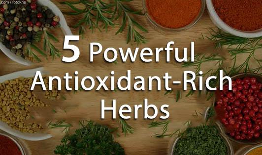 5 Powerful Antioxidant-Rich Herbs