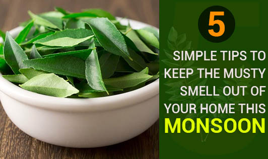 5 Simple Tips to Keep the Musty Smell Out of Your Home This Monsoon