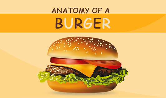 Anatomy of a burger