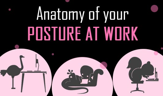 Anatomy of your posture at work