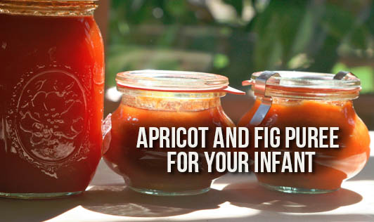 Apricot And Fig Puree For Your Infant