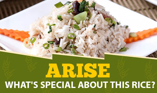Arise - What's Special About This Rice?