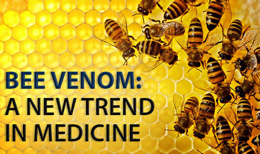 Bee venom: A new trend in medicine