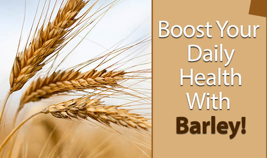Boost Your Daily Health With Barley!