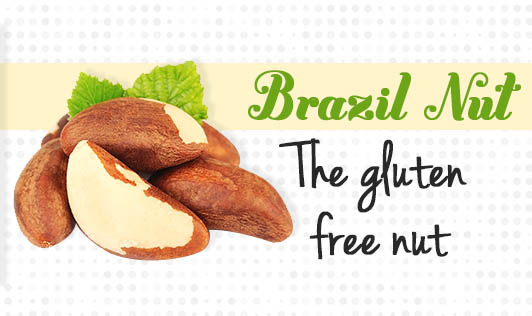 Brazil Nut- The gluten-free nut