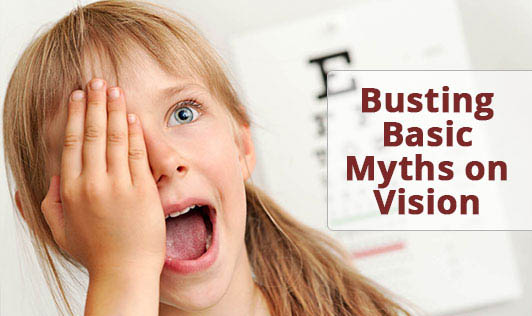 Busting Basic Myths on Vision