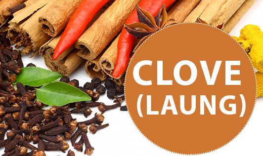 CLOVE (laung)
