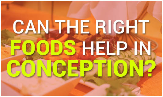Can the right foods help in conception?