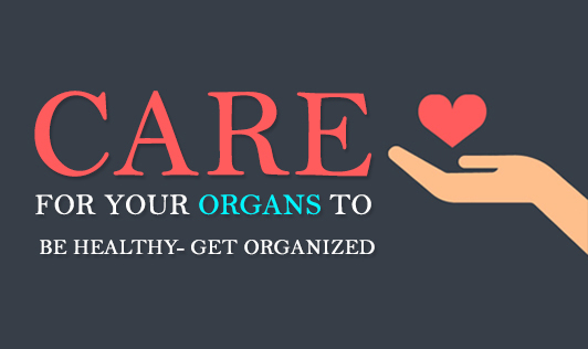 Care for your organs to be healthy Get organized