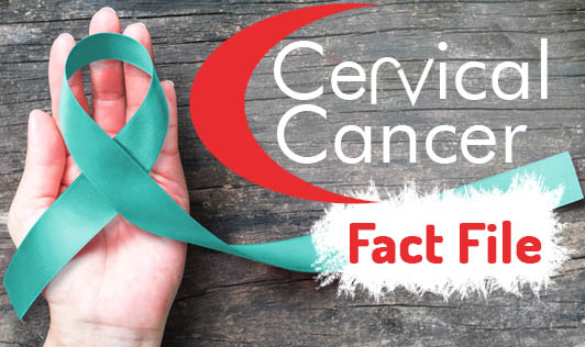 Cervical Cancer: Fact File