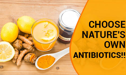 Choose Nature's Own Antibiotics!!