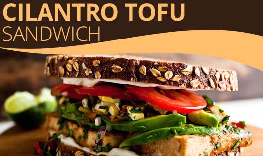 Cilantro Tofu Sandwich