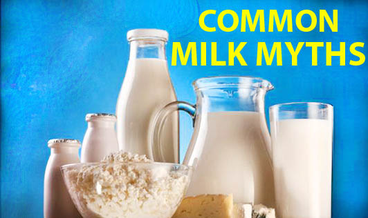 Common Milk Myths