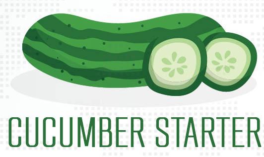 Cucumber Starter