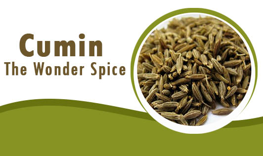 Cumin: The Wonder Spice