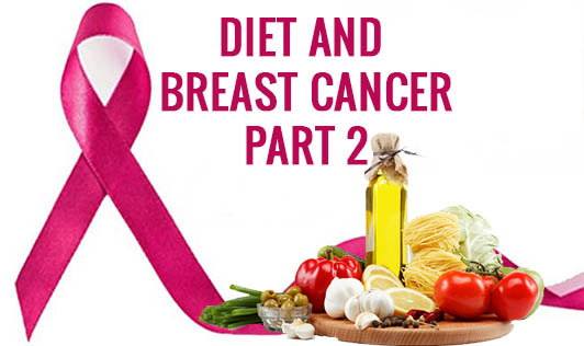 Diet and Breast Cancer- Part 2