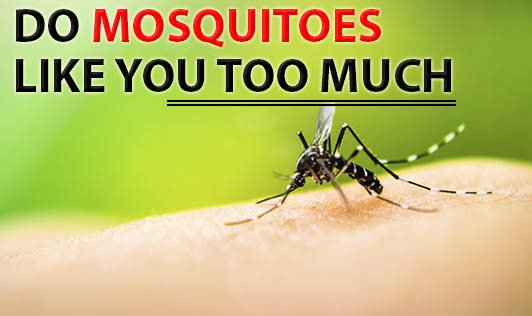Do Mosquitoes Like You Too Much?