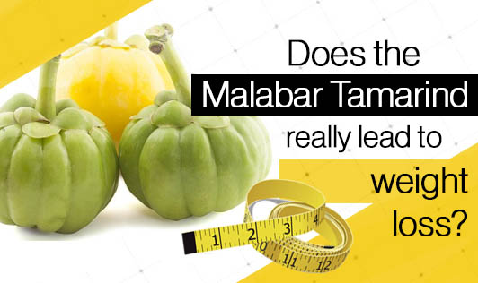 Does the Malabar Tamarind really lead to weight loss?