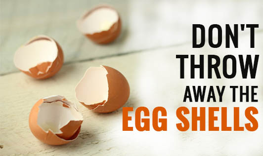 Don't Throw Away the Egg Shells