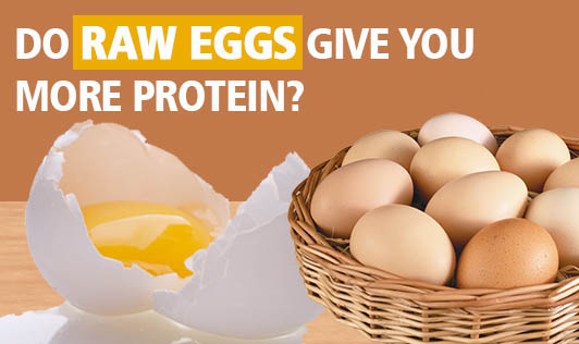 Do raw eggs give you more protein?