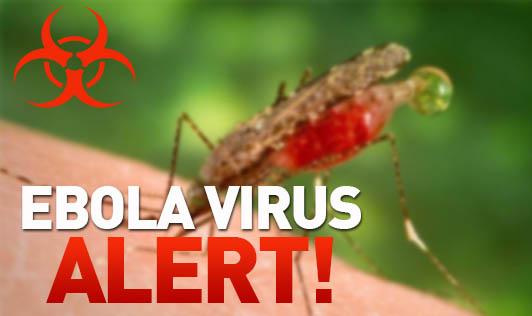 Ebola virus Alert!