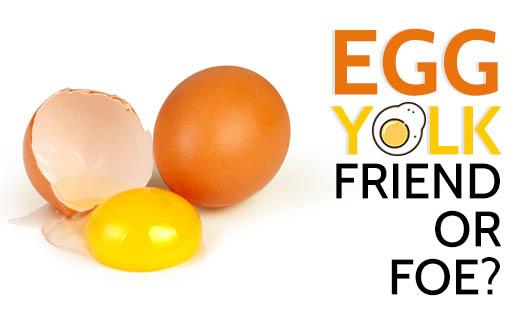 Egg Yolk - Friend or Foe?!