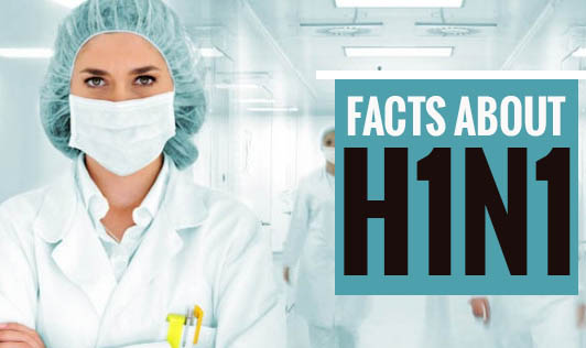 Facts about H1N1