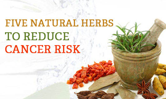 Five natural herbs to reduce cancer risk