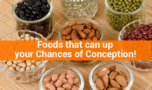 Foods that can up your Chances of Conception!