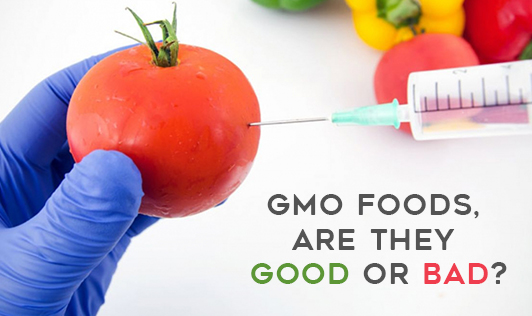 GMO FOODS, ARE THEY GOOD OR BAD?