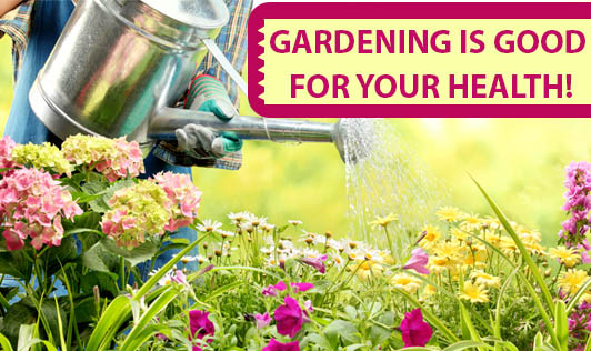 Gardening is good for your health!