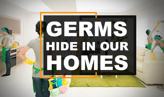 Germs Hide In Our Homes