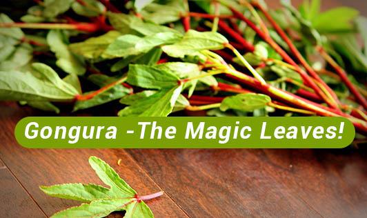 Gongura -  The Magic Leaves!
