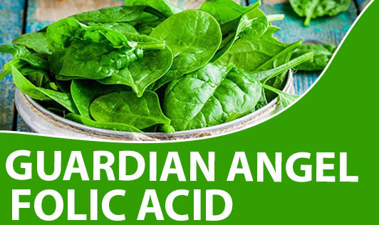 Guardian angel folic acid
