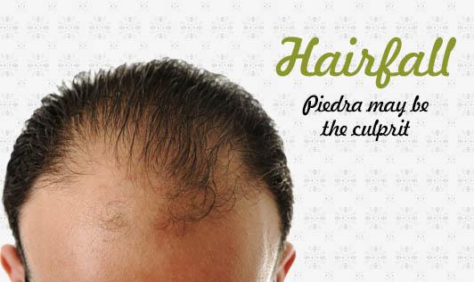 Hairfall? Piedra may be the culprit