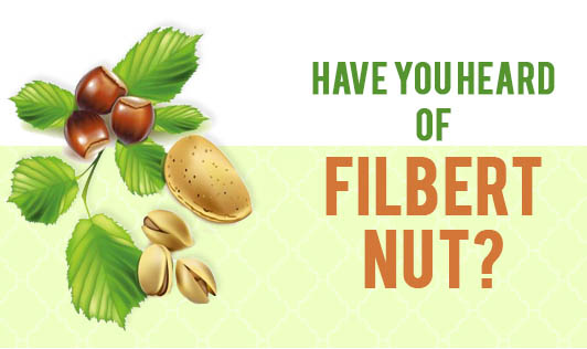 Have you heard of filbert nut?