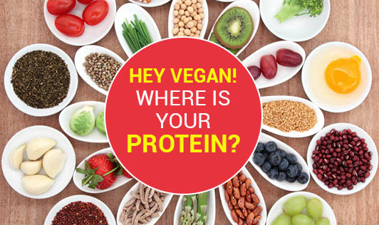 Hey Vegan! Where is Your Protein?