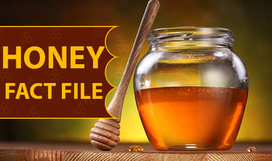 Honey: Fact File