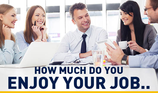 How much do you Enjoy your Job..
