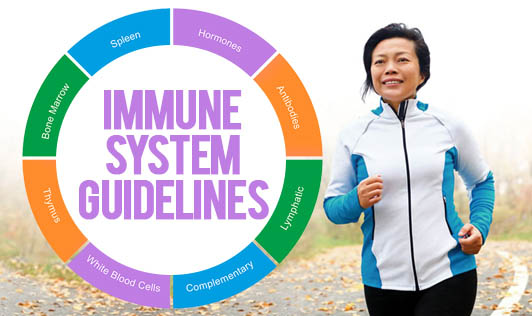 Immune System Guidelines