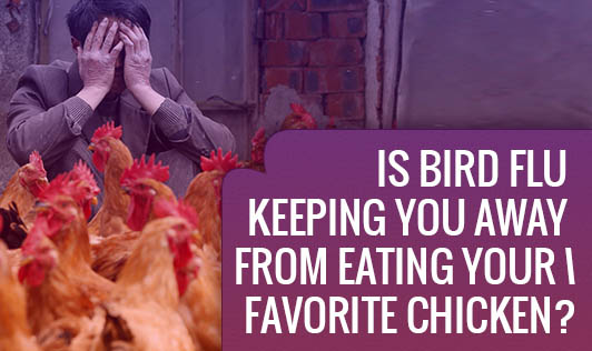 Is Bird Flu keeping you away from eating your Favorite Chicken?