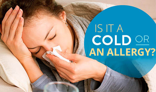 Is It A Cold Or An Allergy?