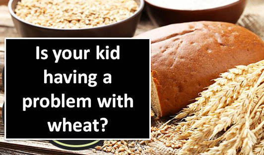Is your kid having a problem with wheat?