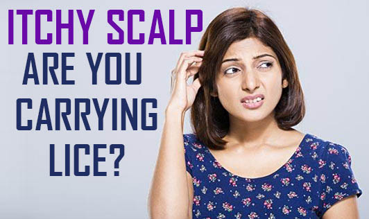 Itchy Scalp - Are You Carrying Lice?