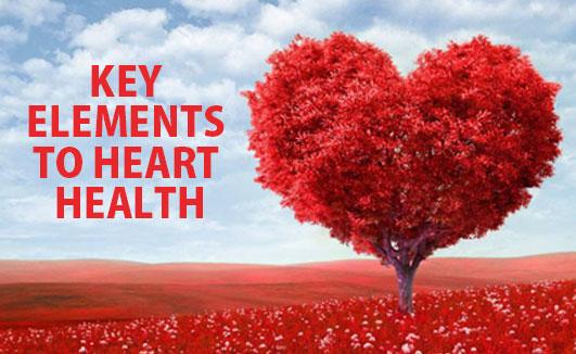 Key elements to heart health