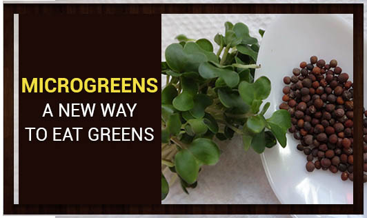 Microgreens:  A new way to eat greens