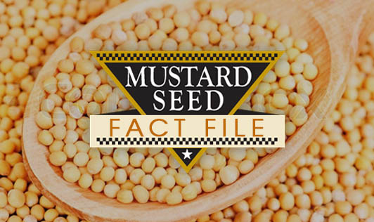 Mustard Seeds: Fact File