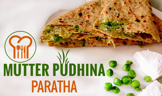 Mutter Pudhina Paratha