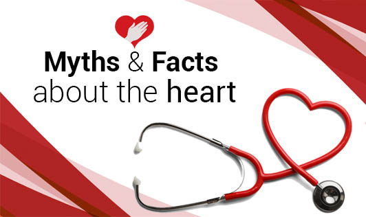 Myths and Facts about the heart